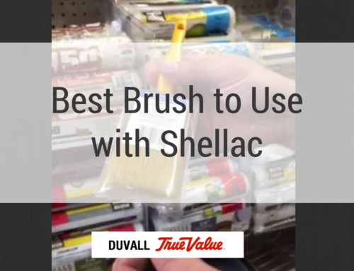 Best Brush to Use With Shellac